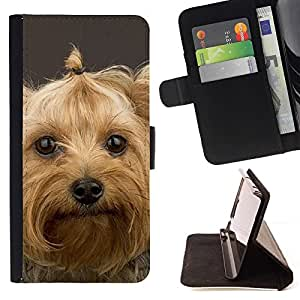 Momo Phone Case / Flip Funda de Cuero Case Cover - Yorkshire Terrier perro de mascota lindo; - Apple Iphone 6 PLUS 5.5