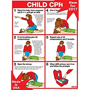 amazon com cpr for adults 18 x 24 laminated poster 2011 cpr rh amazon com printable cpr guidelines 2016 printable cpr steps