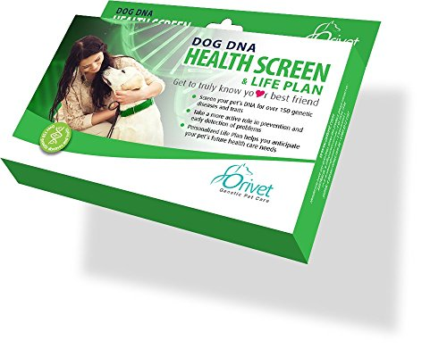 ORIVET Dog DNA Test Kit Health Screen