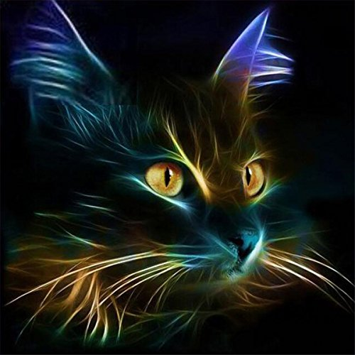 EOBROMD 5D DIY Diamond Painting, Full Drill Paint with Diamonds Embroidery Accessories Wall Sticker for Wall Decor - Cat in The Dark (12 x 12inch)