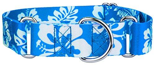 Country Brook Petz | 1 1/2 Inch Blue Hawaiian Martingale Dog Collar - Medium