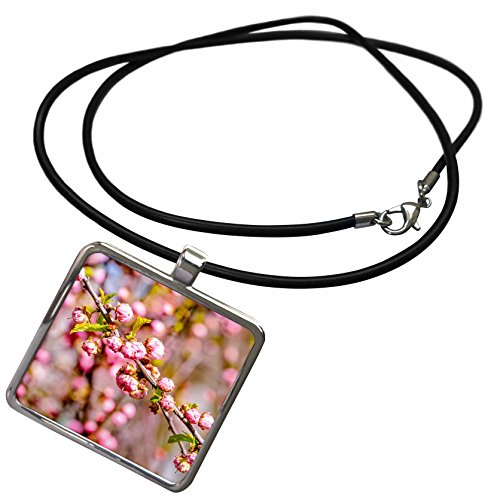 Flower Branch Plum (3dRose Alexis Photography - Flowers Sakura - Branch of flowering plum tree with flowers - Necklace With Rectangle Pendant (ncl_271526_1))