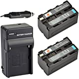 DSTE 2x NP-F750 Battery + DC01 Travel and Car Charger Adapter for Sony CCD-TRV215 CCD-TR917 CCD-TR315 HDR-FX1000 HDR-FX7 HVR-V1U HVR-Z7U HVR-Z5U Camera as NP-F730 NP-F770