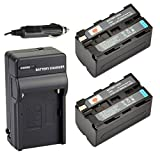 DSTE® 2x NP-F750 Battery + DC01 Travel and Car Charger Adapter for Sony CCD-TRV215 CCD-TR917 CCD-TR315 HDR-FX1000 HDR-FX7 HVR-V1U HVR-Z7U HVR-Z5U Camera as NP-F730 NP-F770
