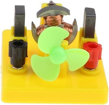 IPOTCH Modelo de Motor de Ventilador Plástico Herramienta para Aprendizaje de Ciencia de Electromagnetismo: Amazon.es: Juguetes y juegos