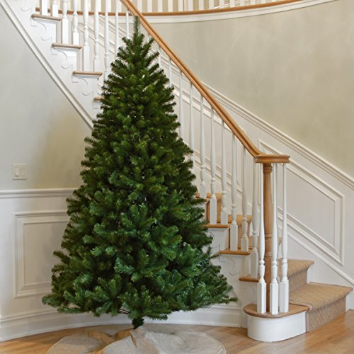 Review National Tree 7.5-Foot North