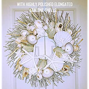 "21"" Sea Shell Wreath on Birch Twig with Highly Polished Abalone Shells 75"