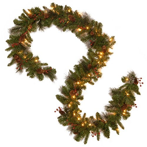 National Tree 9 Foot by 10 Inch Crestwood Spruce Garland with 50 Warm White Battery Operated LED Lights -