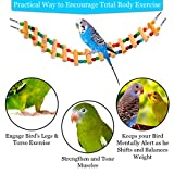 SunGrow Bird Ladder Bridge, 20 Inches Long, Helps