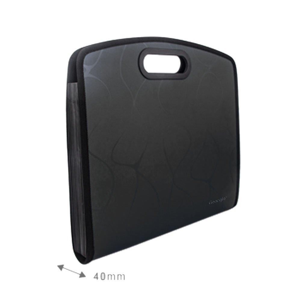 e947a712ac76 Amazon.com : Starsource A4 Size Plastic 13 Compartments File ...