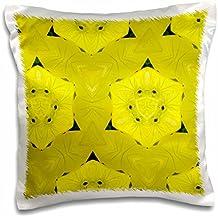 Lee Hiller Designs Kaleidoscope - Kaleidoscope Sundrops - 16x16 inch Pillow Case (pc_5804_1)