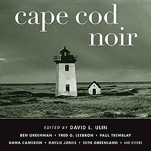Cape Cod Noir Audiobook