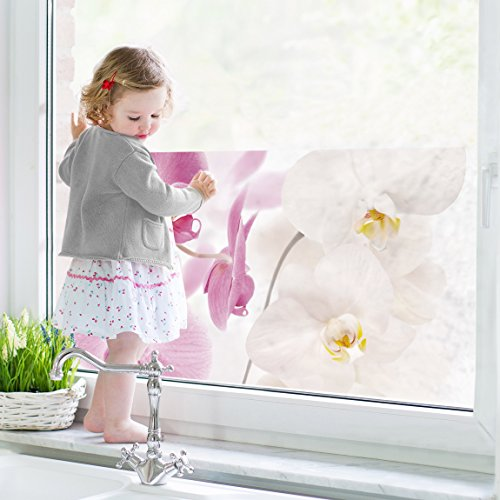 Window Mural Delicate Orchids window sticker window film window tattoo glass sticker window art window décor window decoration Dimensions: 56.7 x 113.4 inches - Delicate Orchid
