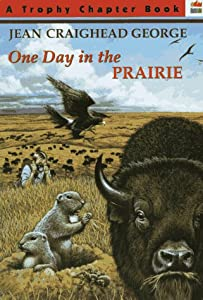 One Day in the Prairie (Trophy Chapter Book) (Jean ...