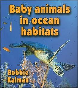 Baby Animals in Ocean Habitats (Habitats of Baby Animals)