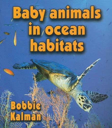 Baby Animals in Ocean Habitats (Habitats of Baby Animals) PDF