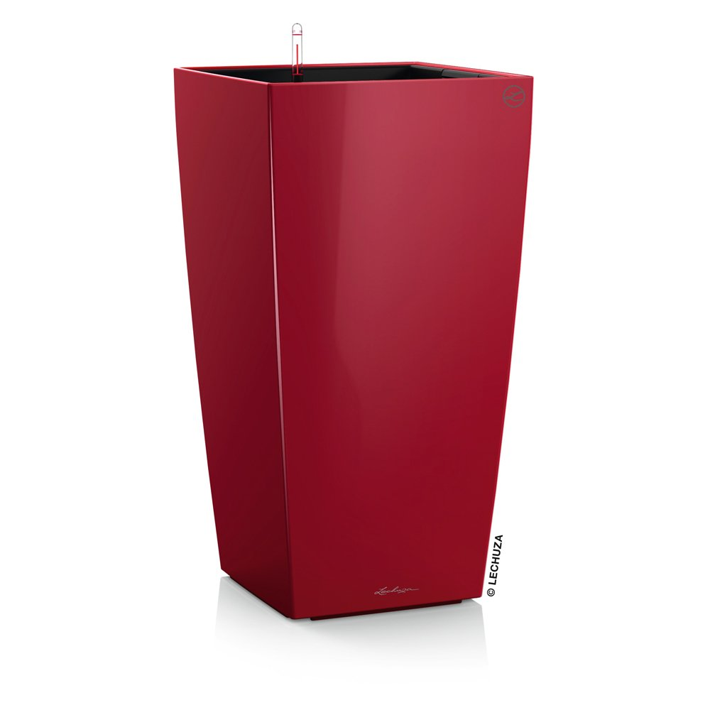 Lechuza Cubico Premium 30 - All-In-One, Scarlet by Lechuza