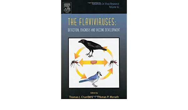 The Flaviviruses: Detection, Diagnosis and Vaccine Development: 61 (Advances in Virus Research)