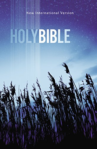 NIV, Value Outreach Bible, Paperback
