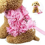 WORDERFUL Dog Flower Harness Waking Vest Harness with Pet Leash and Velcro for Halloween Cat Puppy (XS)