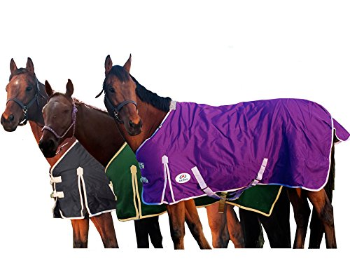 Derby Originals Deluxe 600D Nylon Turnout Winter Blanket- Horse and Pony Sizes, Purple, 66