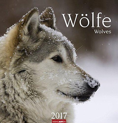 Wölfe - Kalender 2017