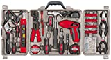 Apollo Precision Tools DT0738 Household Tool Kit, 161 Piece