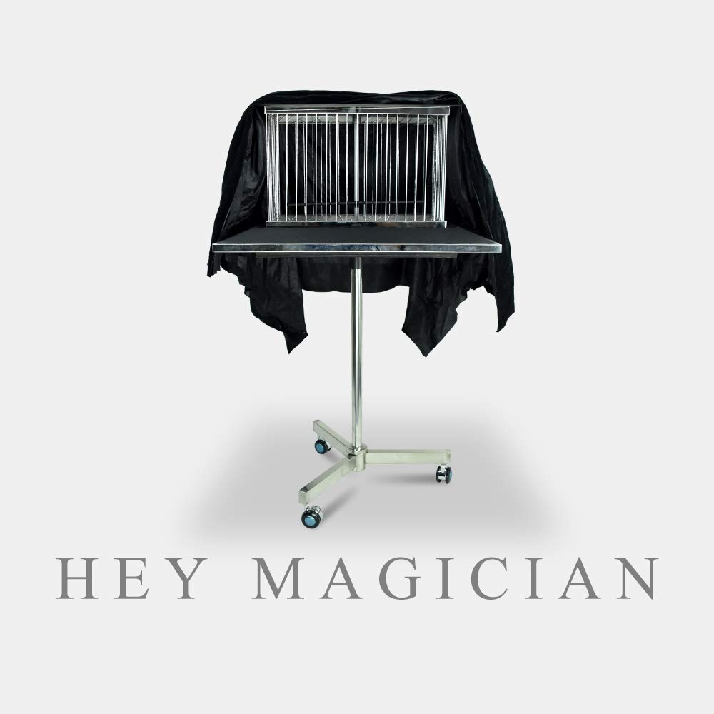 Vanishing Dove Cage Bird Cage Disappearing Table Magic Tricks Amazing Stage Magic Gimmick Illusions Props Comedy Magic Professional Magician Gimmick Magic Shows Magic Table Accessories by Hey magician (Image #1)