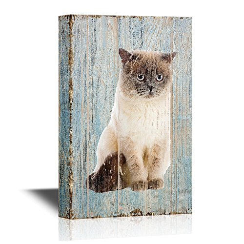 Cats Cat on Wood Style Background