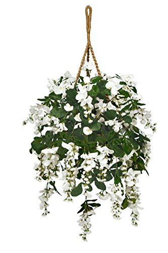 (Arcadia Silk Plantation Extra Full Artificial Wisteria Hanging Basket,)