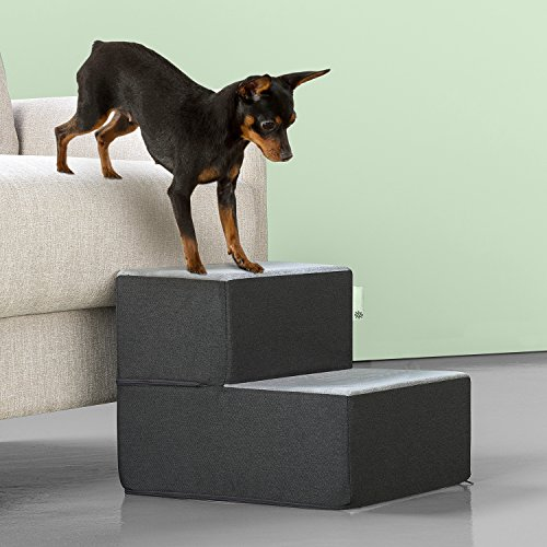 Zinus 2 Step Easy Pet Stairs/Pet Ramp/Pet Ladder/Grey, Extra (Two Step Stairs)