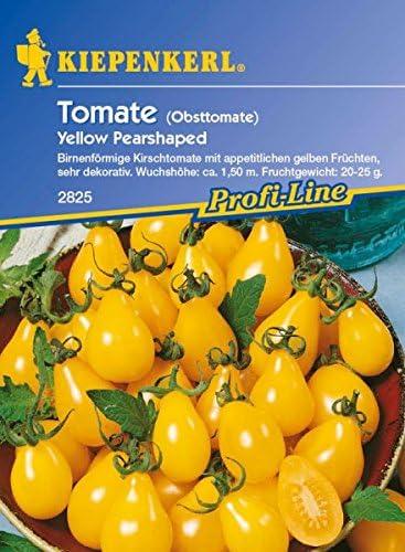 Tomaten Sets bis zu 22 Samen  NEU! 48h Lieferung