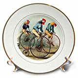 3dRose cp_48558_1 Roosters Riding-Porcelain Plate, 8-Inch