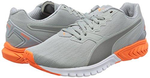 Orange Femmes carrire Pwrwarm 02 Pour Dual Ignite Gris Fitness Puma De Chaussures cPWYqvxSc