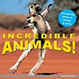 Animals!, PlayBac Staff, 1602140596