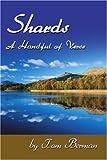 Shards, Tom Berman, 0595241972