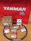 Yanmar 2GM20 3GM30 Maintenance Minor Kit 128270-12540 24341-000440 104211-42071 128670-77350 104211-42090 104511-78780