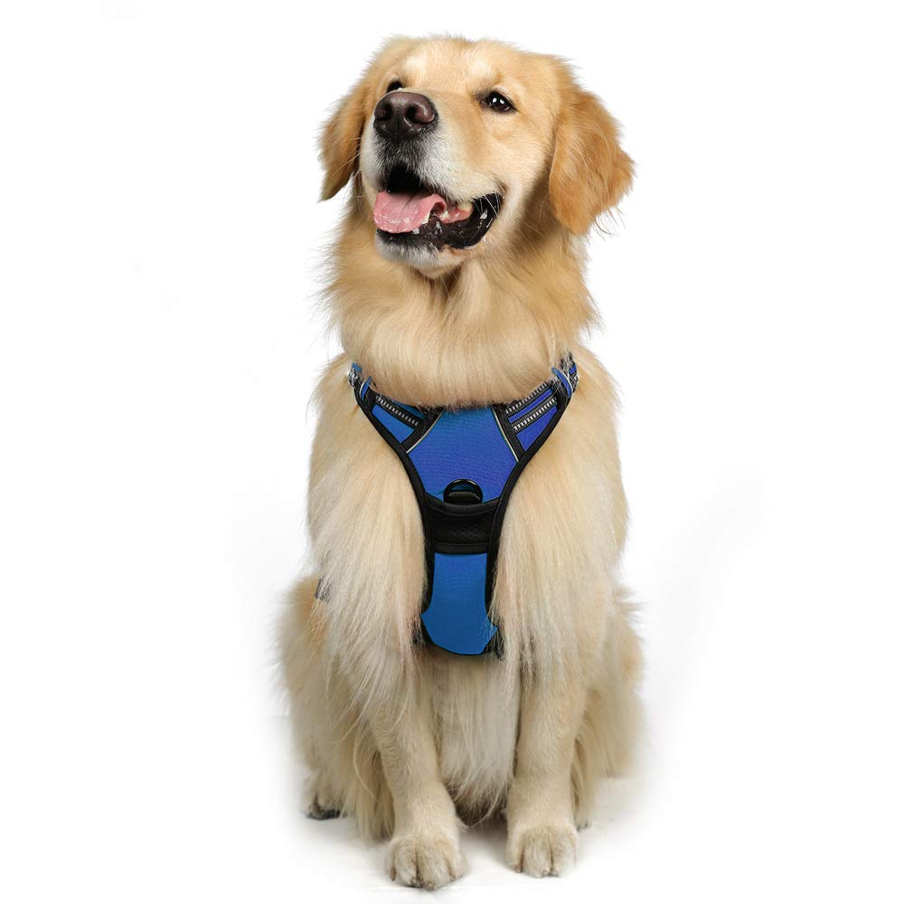 Rabbitgoo Dog Harness No-Pull Pet Harness Adjustable Outdoor Pet Vest 3M Reflective Pet Vest Harness for Large Breed (Blue, L)