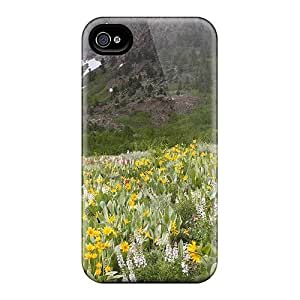 Fashionable HDDvkHa2569gPbpo Iphone 4/4s Case Cover For Oak Creek Canyon In Arizona Protective Case