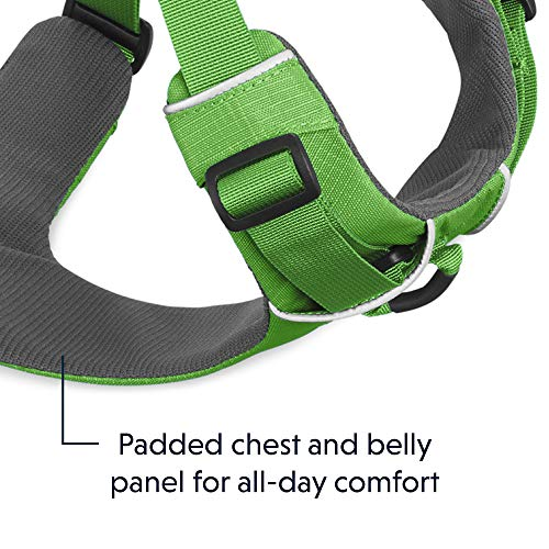RUFFWEAR All Day Adventure Dog Harness, Small Breeds, Adjustable Fit, Size: Small, Meadow Green, Front Range Harness, 30501-345S