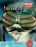 Incredible Insects, John Townsend, 1410917150
