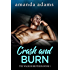 Crash and Burn (The Walker Brothers Book 1)