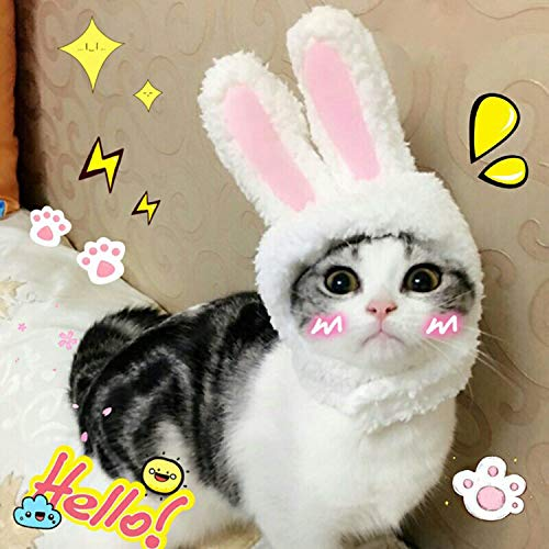 BWOGUE Cute Costume Bunny Rabbit Hat with Ears