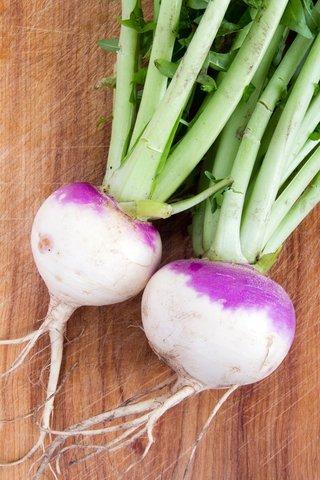 1LBS Purple Top Turnip Deer Food Plot Seeds Food Plot Non-GMO Vegetable Garden Micro Greens Seeds Whitetail Deer Green Goose