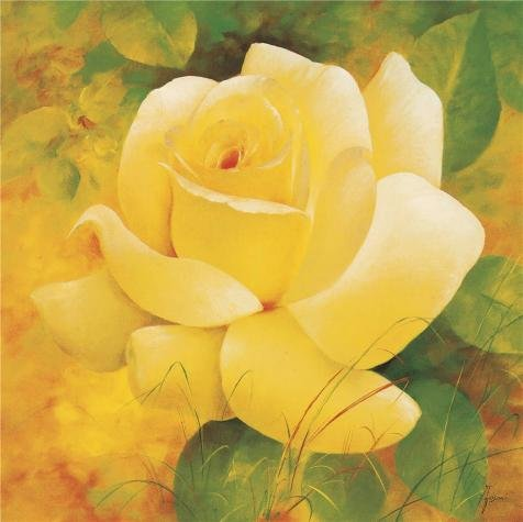 Perfect Effect Canvas ,the Replica Art DecorativePrints On Canvas Of Oil Painting 'a Yellow Rose', 12x12 Inch / 30x31 Cm Is Best For Basement Decoration And Home Decoration And Gifts