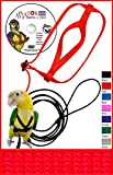 (US) The AVIATOR Pet Bird Harness and Leash: Petite Red