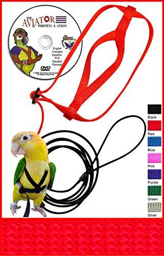 Bird Leash (The AVIATOR Pet Bird Harness and Leash: Petite Red)