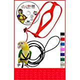 The AVIATOR Pet Bird Harness and Leash: Petite Red