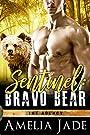 Sentinel: Bravo Bear (The Agency Book 1)