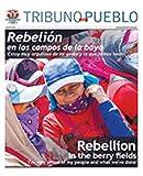 Tribuno Del Pueblo: more info